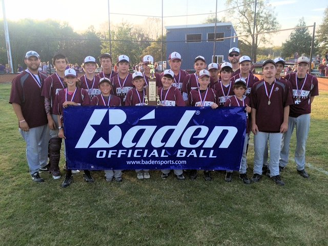 2015 Baseball Class M State Champions - Cobden
